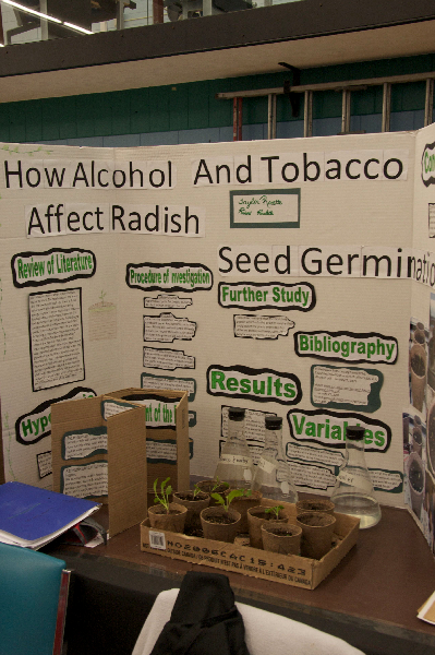 science-fair-2009-4