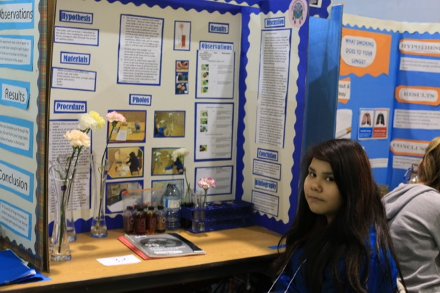 Science Fair 2016 - 13