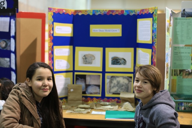 Science Fair 2016 - 2