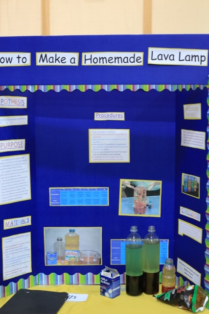 Science Fair 2016 - 27